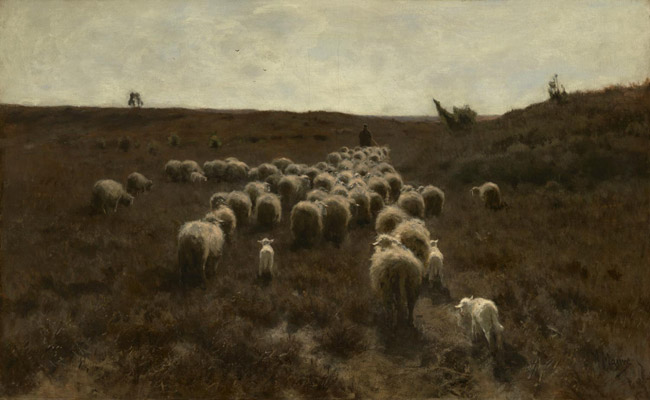 The Return of the Flock, Laren
